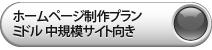 ホームページ制作 ミドル(CMS)プラン